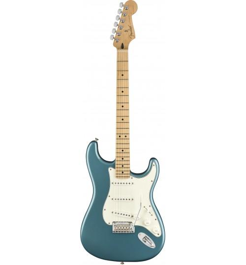 Fender Player Strat MN TPL 0144502513