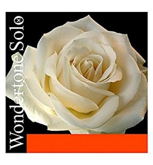 TEL KEMAN WONDERTONE SET PIRASTRO 410521
