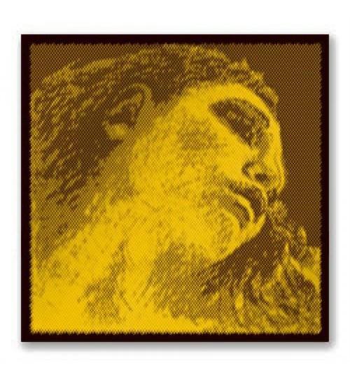 TEL KEMAN EVAH PIRAZZI G-GOLD MEDIUM SET PIRASTRO 415021